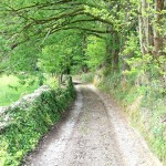 Camín de La Cabaña a Trambarría
