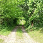 Túnel natural