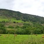 Vistas al Monte Cayón (El Oscuredal)
