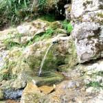 Fuente de la Canga (Pintueles)