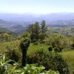 Desde Anayo: vistas a Viyao y al fondo (entre niebla), Los Picos de Europa