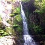 Cascada de Firbia. 15 mts. de altura