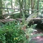 El Puente de paso al Molín de El Pitu.