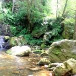 Río Acebo