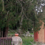 La capilla de la Magdalena.