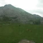lagos-covadonga-10660139_798198093545575_3298997391372594504_n